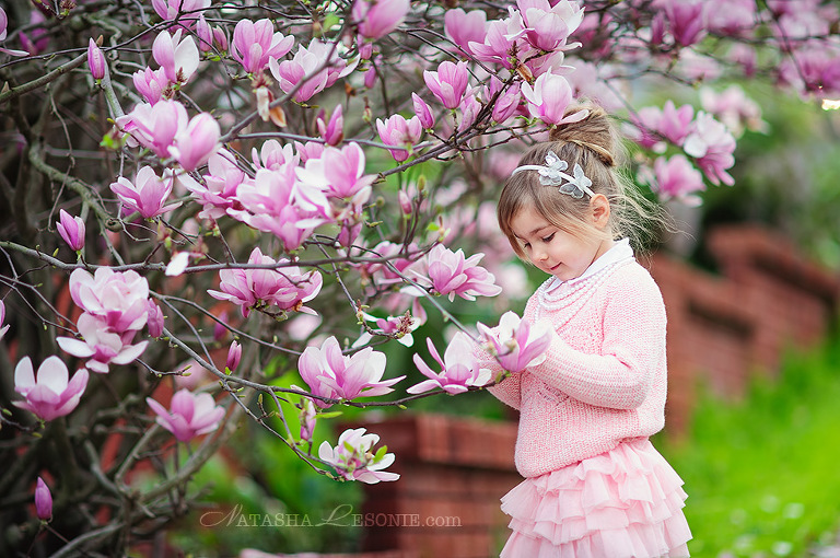 Kids Photography Shoot in Sydney. Beautiful girls photo portrait under blooming magnolia tree